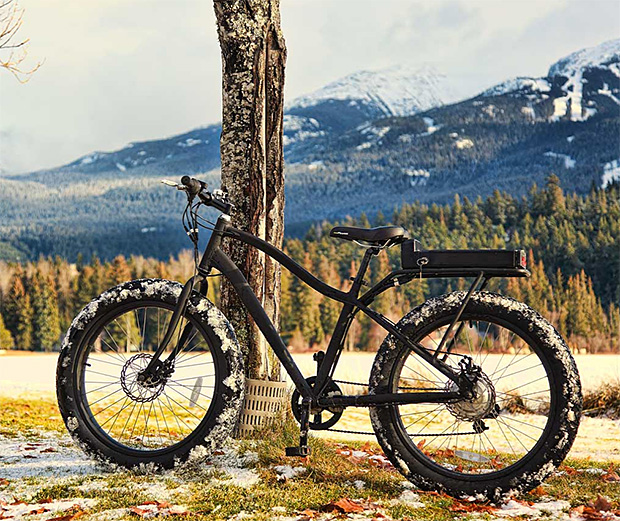 Surface 604 Electric Fat Bike at werd.com