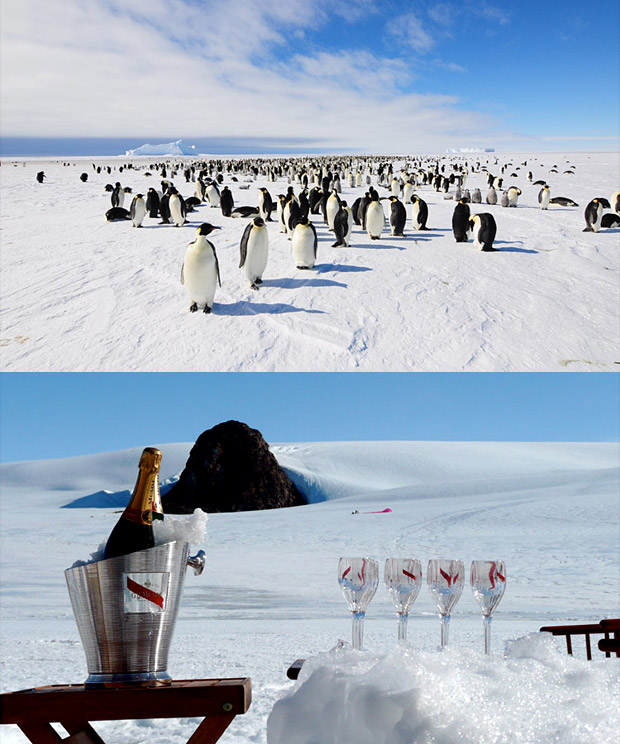 White Desert Luxury Antarctica Trips at werd.com