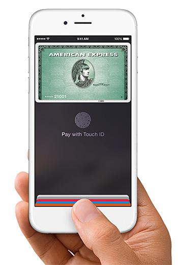 Apple Pay at werd.com