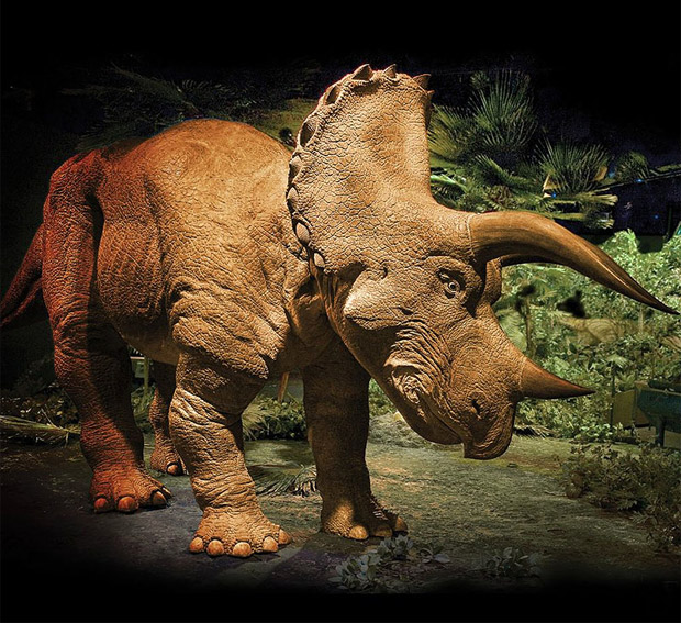 20 Foot Animatronic Triceratops at werd.com