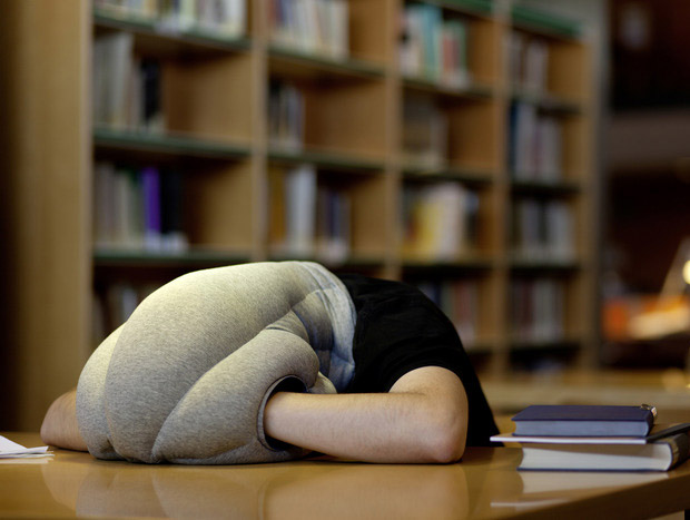 Ostrich Pillow at werd.com
