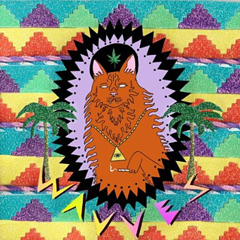 King Of The Beach by Wavves at werd.com